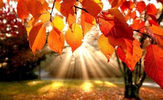 22 de Setembro às 14.30 ocorre o Equinócio de Outono