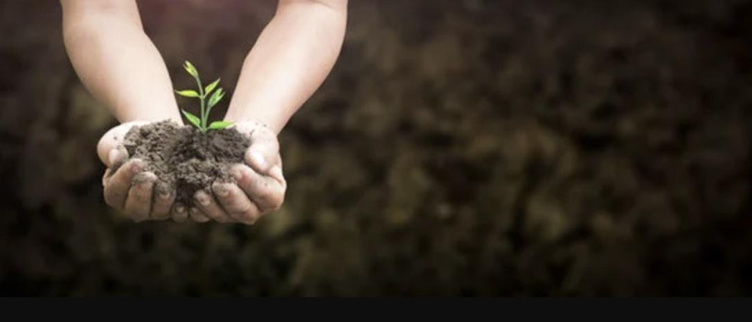 Dia Mundial do Combate à Seca e à Desertificação